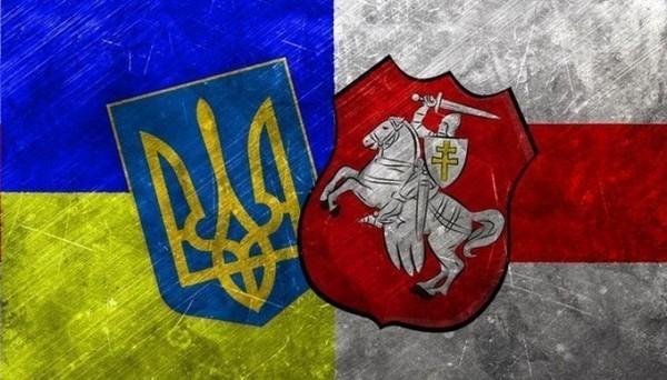 Прогноз на матч Украина - Беларусь, фото гугл