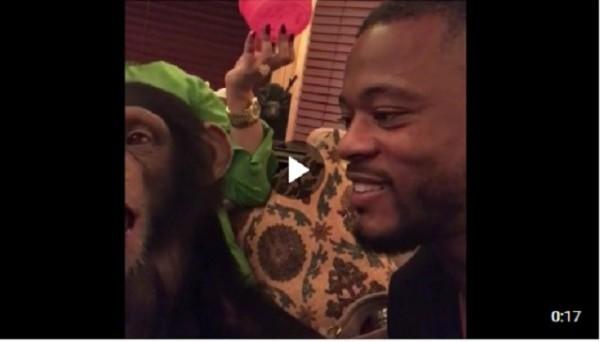 Эвра поцеловал обезьяну